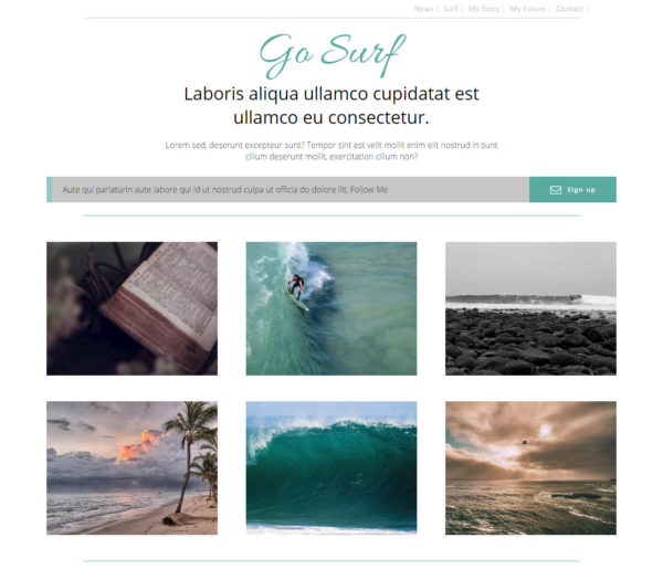 Xara Go Surf Template Full height Image